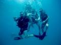 Fun-Diving