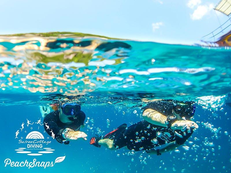 Koh Nangyuan Snorkeling Divemaster