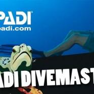 PADI Divemaster – Introduction