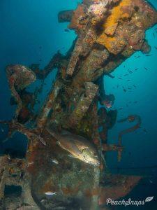 Master Scuba Diver Wreck Diving